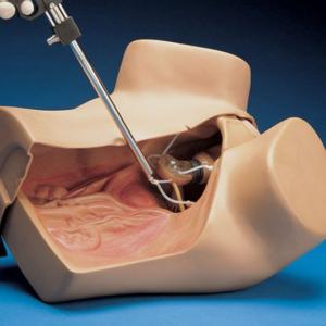 Zoe -gynekologinen simulaattori